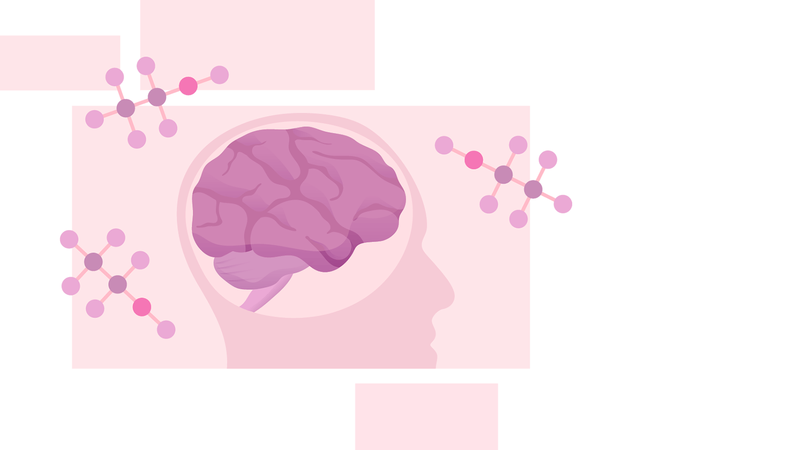 Illustration of a human head with the brain exposed